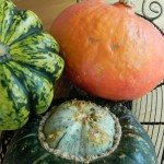 Super-Squash for Fall Cooking