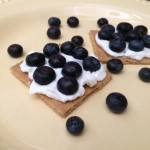 Blueberries Will Travel
